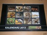 Kalendarz2013
